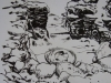 Les Esclaves oubliés de Tromelin, par Sylvain Savoia,  extrait