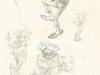 Spirou et Fantasio tome 53